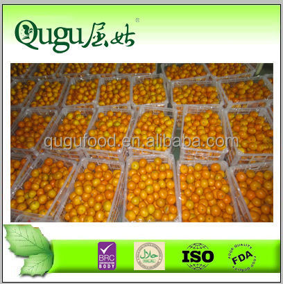 2014 New crop Chinese fresh mandarine orange price