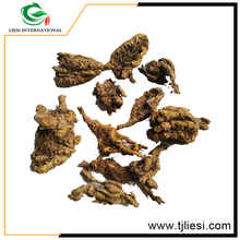 raw chinese herbs Radix /Herba chinese goldthread/Cortex/Fructus/crude medical herbs huang lian