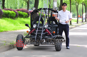 RC Car Racing Go Kart for Sale sx-g1101(lxw)-1a Pro Kart EG3001 on Sale