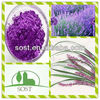 Factory Supply High Quality Lavender extract Powder