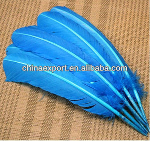 duck feather for sale
