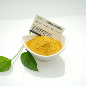 High Quality Halal Certificated Hot Selling Concentrated Curry Flavor Powder Spice