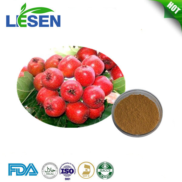 Supply with best price Good quality fresh hawthorn berry extract