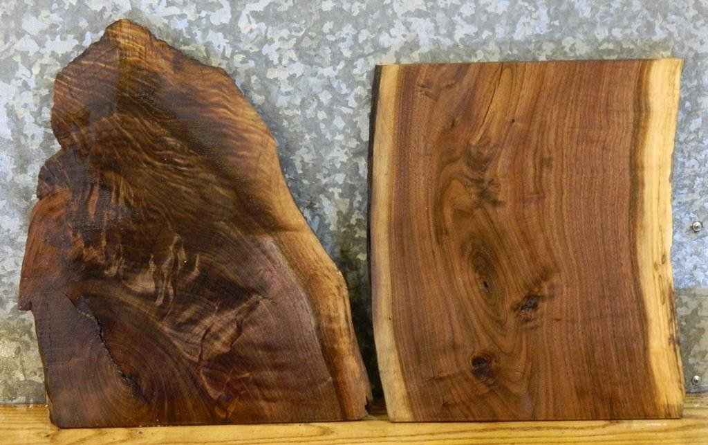 2- Partial Live Edge Black Walnut End Table Top/Taxidermy Base Slabs 7882,7892 T: 1 1/16'', W: 15 1/8'', L: 18 1/2'' - 7882,7892