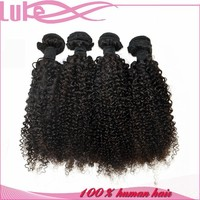 Top Grade 6A+ Human Hair Can Be Dyed Any Color 100% Virgin Malaysian Kinky Curly Hair