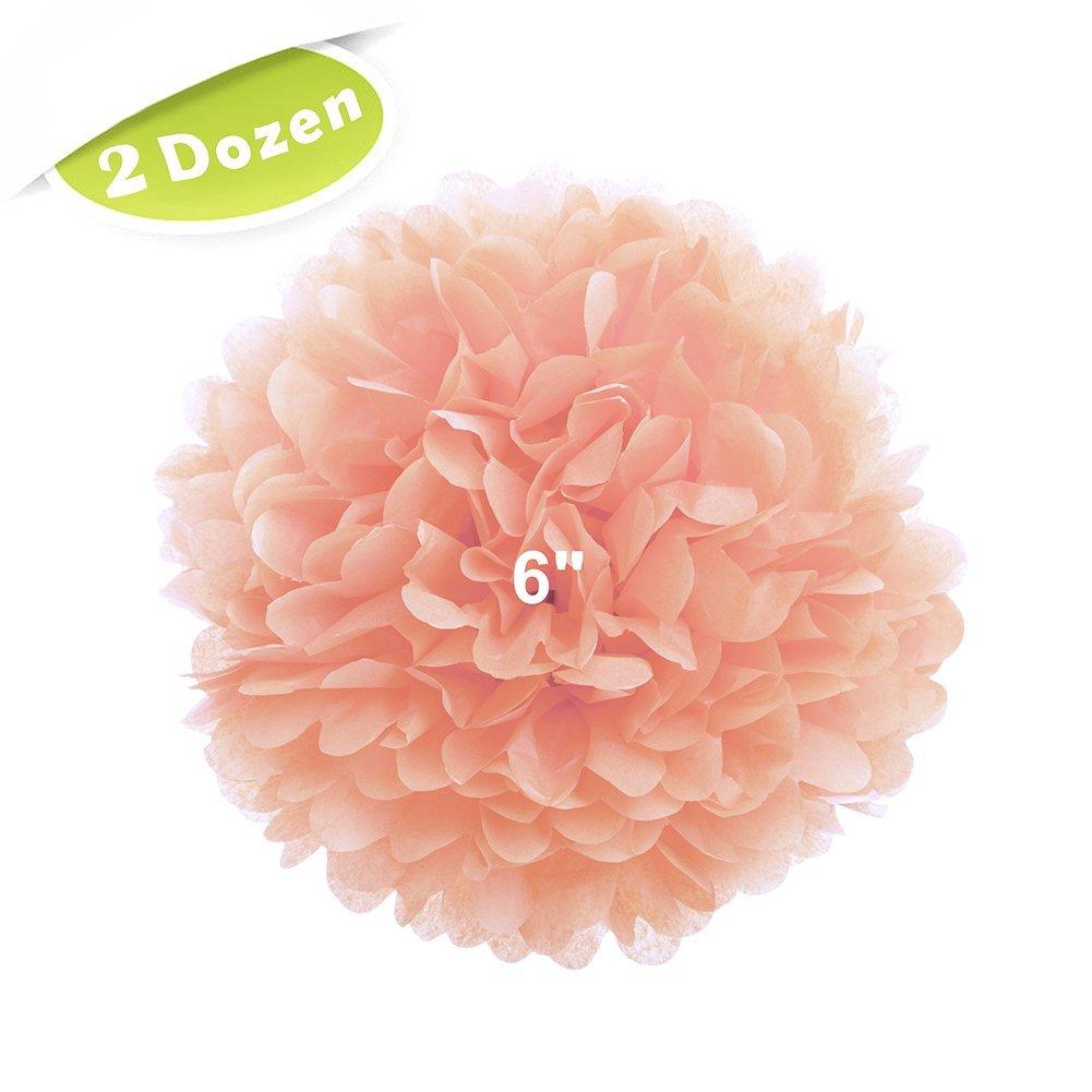 """(Price/24 Pcs)Aspire 24 pcs 6"""" Paper Pom Poms, 15 Colors Tissue Paper Flowers, Party Decoration - Peach"""