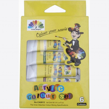 6 colors art acrylic paint set