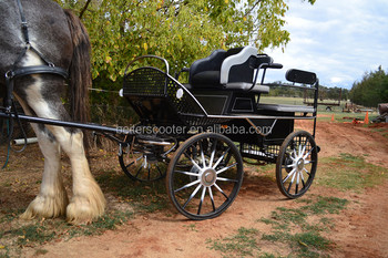 clydesdale draft horse and buggy, horse drawn cart