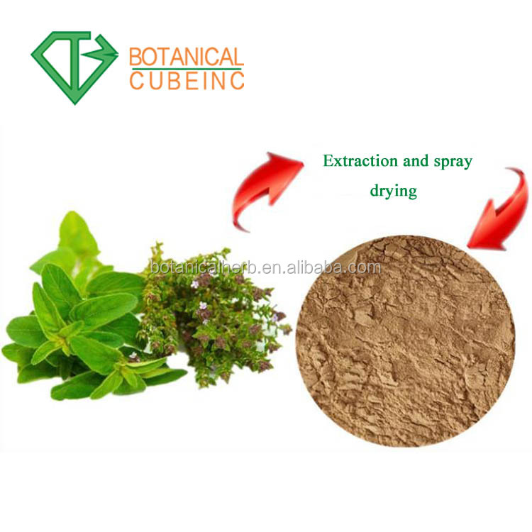 Manufactory Supply Natural Ivy Extract Hederacoside C Hedera Helix Extract  - Buy Dried Ivy Leaf Extract,Hederacoside C,Ivy Leaf P e  Product on
