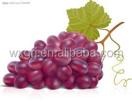 High Quality Resveratrol (Trans) 98%