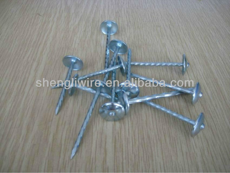 common iron nails and galvanized nail coil nail