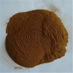 fennel seed extract free sample green coffee bean extract powder