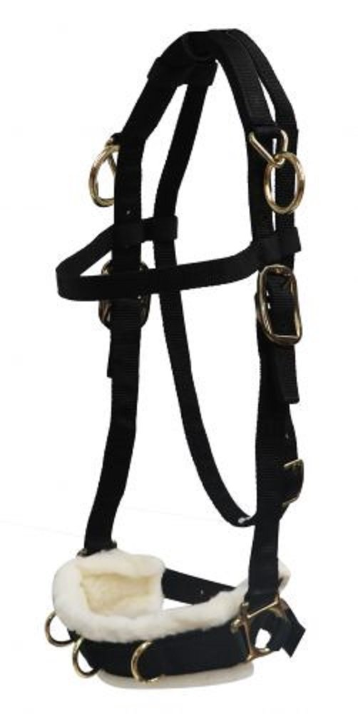 White Horse Equestrian Pessoa Style Pulley Rope Schooling System Training Aid