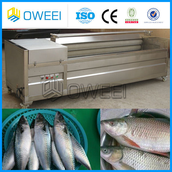 fish processing descale machine