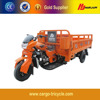 CE ISO Approved Motor Gasoline Tricycle/Moto Cargo 300cc/Tricycle