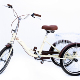 good price chinese white electric tricycle for adults , drifting cycle ,drifting tricycle