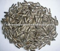 chinese sunflower seeds in shell