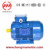 4HMA (IE4) Series Aluminum Housing Super Premium Efficiency Three Phase Electric AC Asynchronous Induction Motor 2 Poles 0.75KW