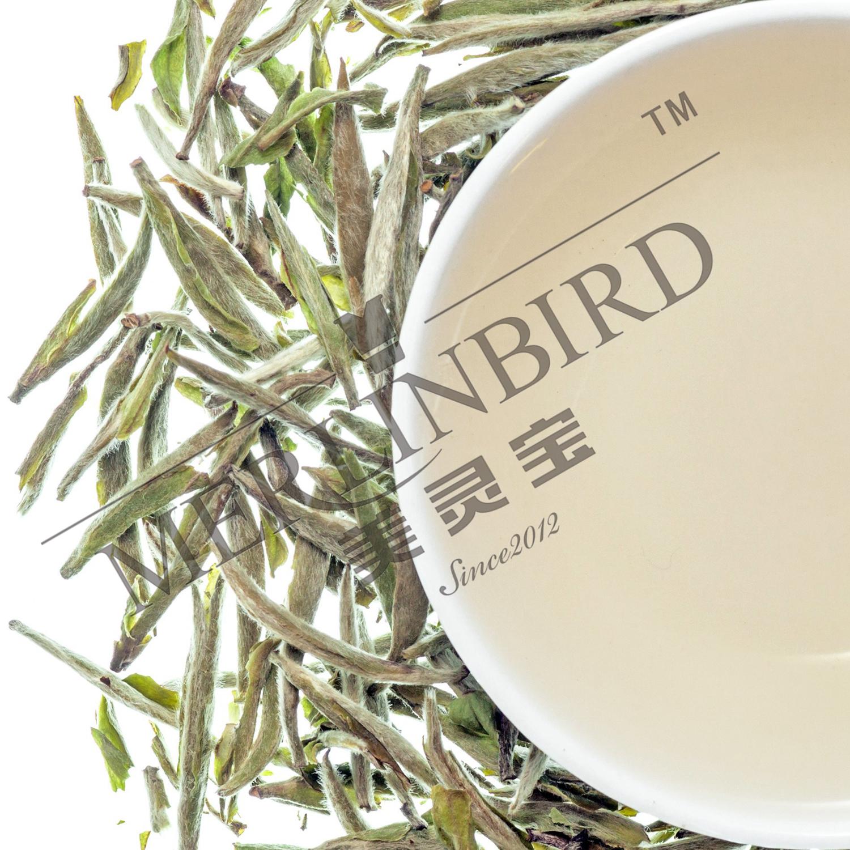 Wholesale High Quality Full range of Chinese organic Best white tea - 4uTea   4uTea.com