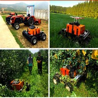 2017 new types petrol and electronic commercial lawn mowers