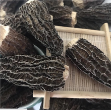 Yang du jun Market price hot sale dried herb black morel mushroom