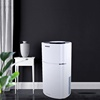 Home Apartment Air Purification Dehumidifier 60L/Day Anion Drying Function Large Dehumidifier Peltier