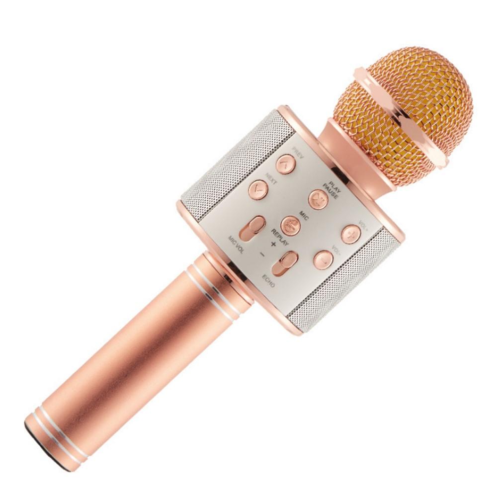 Wholesale Wireless Microphone With Speaker Karaoke Microfoon Mike Mic In Shenzhen