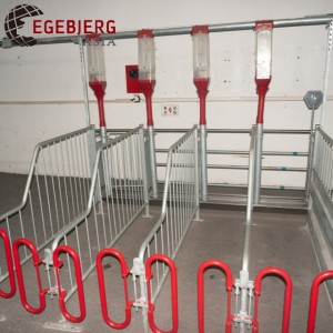 Gestation crates for pigs/Penning equipments /Pig cage