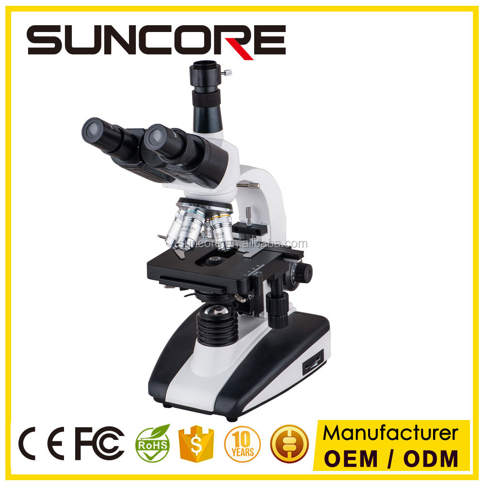 SUNCORE 136sm Boshida Factory Price Light Optical Compound Biological Binocular Microscope