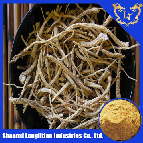 best price ginseng extract