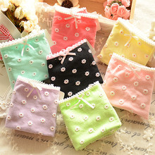 010 Ladies Cotton Underwear Cute Japanese Daisy cotton briefs underwear wholesale gift box explosion