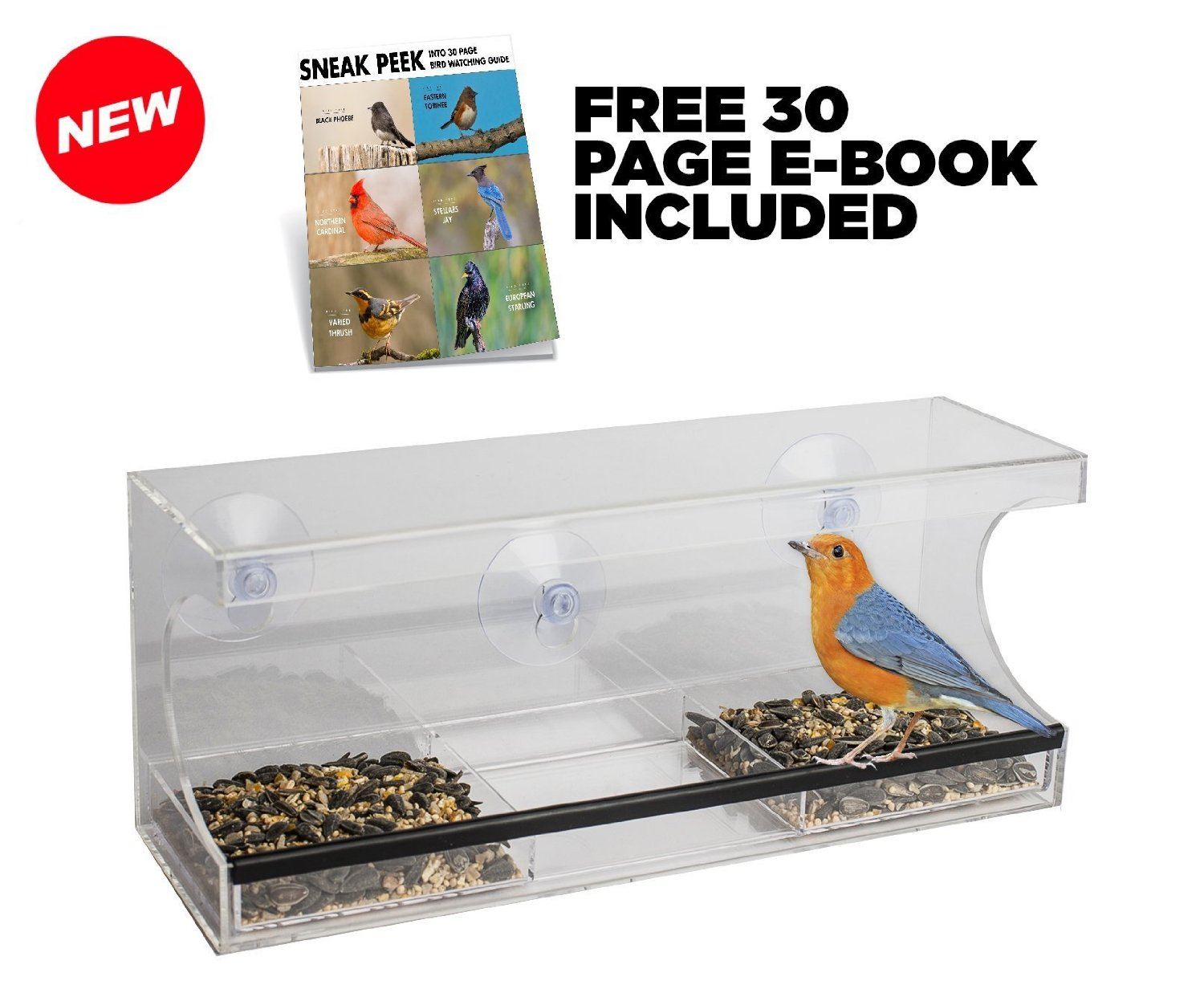 Outdoor Trading Window Bird Feeder with Removable Water Tray
