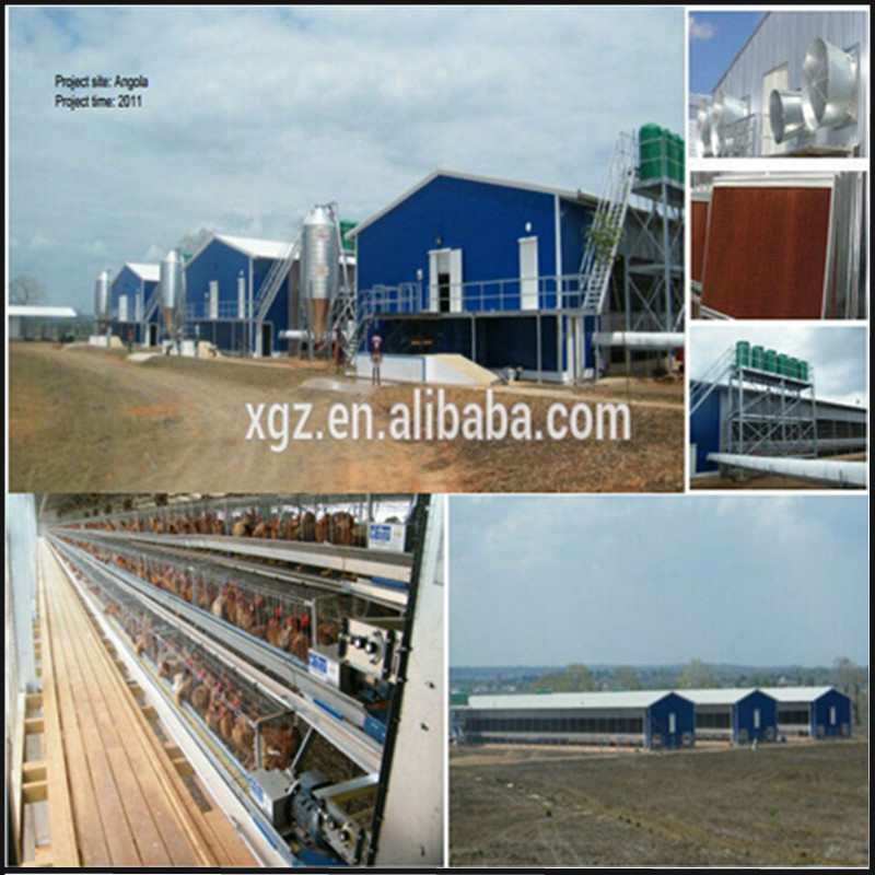 good quality light steel chicken house/poultry shed with fast installation