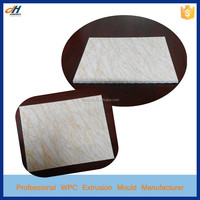 PVC Stone Plastic Composite Wall Coverings Extrusion Mould