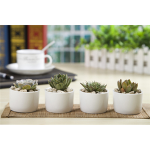 Wholesale Stand Designs Cheap Small Flower Pot