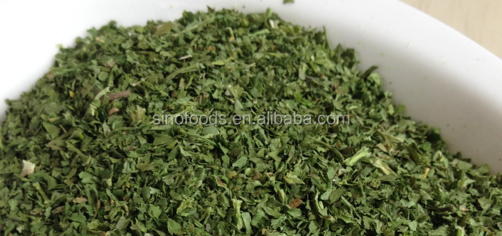 New crop Coriander Leaves Dehydrated Vegetables Ad Food