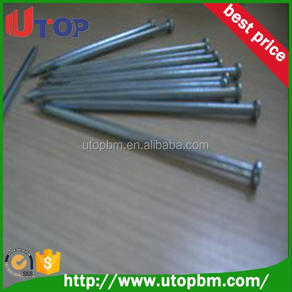 Construction use concrete steel common nail