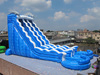 18oz dual lane giant inflatables water slide for sale,cheap inflatable slide dolphin
