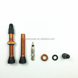 Hot Sale Muti-color Presta Tubeless Valve Stems for Tubeless Bicycle Tyre