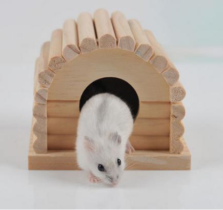 Al Madera Los De Compre Venta Hamster Por Casas Para Online Mayor rodxBCe