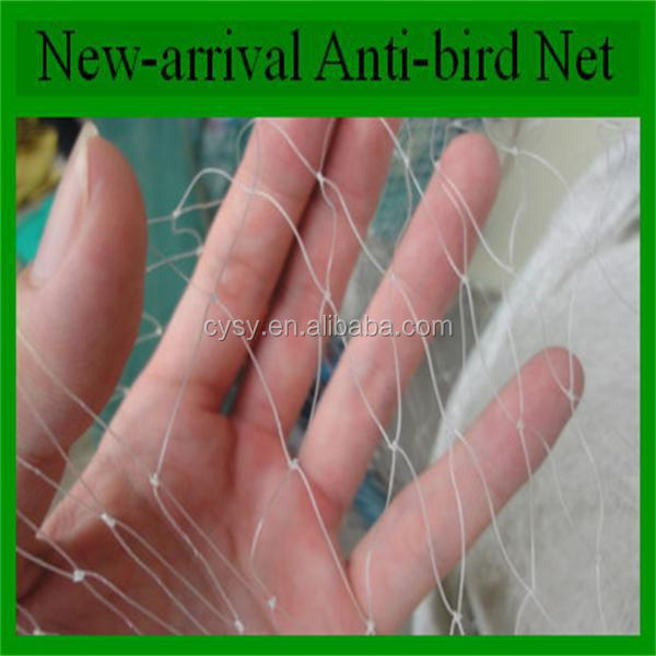 <strong>PE</strong> anti bird net for fruit protection