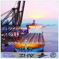 sea freight agent/WCA member/best price and service in qingdao
