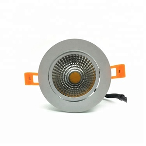 Dimmable Driverless cob light sources led downlight 12W