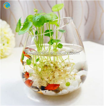 Oval Glass Vase Wholesale Buy Round Glass Bowl Vase Wholesale