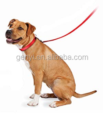 High Quality Pet Product Braided Rope Bungee Cheap And Fine Pet Safe Nylon Dog Leash Pet Accessory