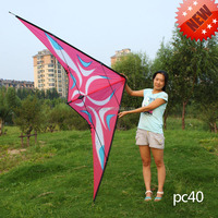 Hot sale dual lines stunt kite for sale large 2.7m carbon new