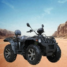 Powerful adults racing ATV Quad bike 600cc 4x4
