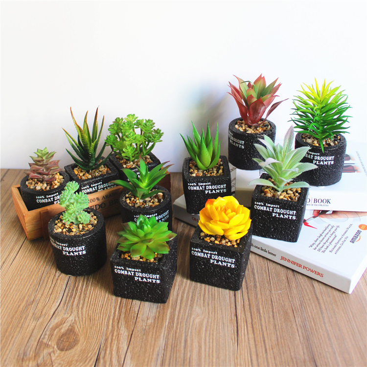 Amazon Top Sale 2018 Artificial Succulents In Pots Faux Cactus Succulents Plant