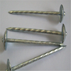BWG9*2.5'' E-Galvanized Umbrella Roofing Nail Export to Africa