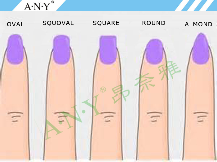 Nail Form Private Label